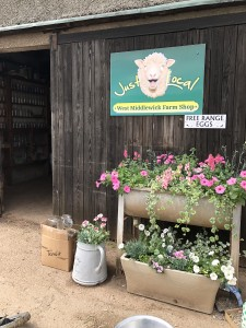 Flowers are out at West Middlewick Farm shop